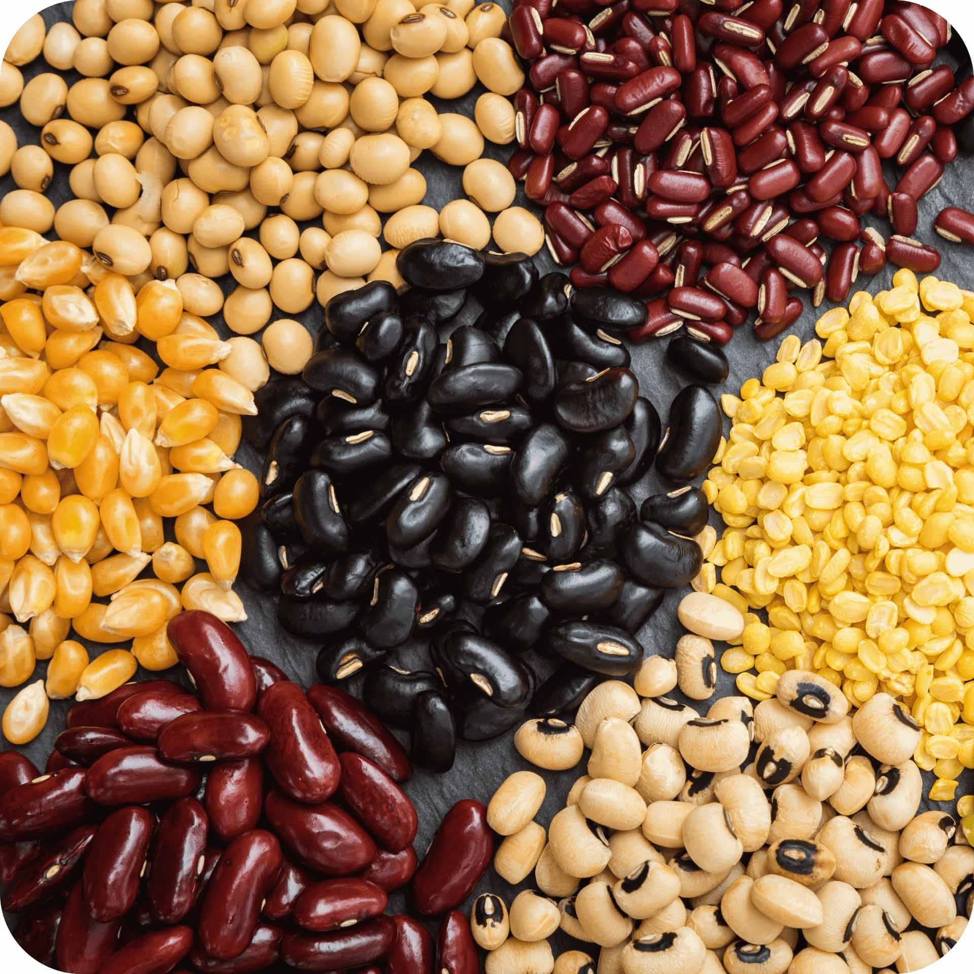 Healthy grains and pulses